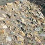 stone pitching